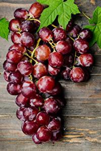 Fotos Weintraube Großansicht Bretter Blattwerk