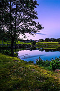 Hintergrundbilder Norwegen Landschaftsfotografie See Bäume Gras Rogaland Natur