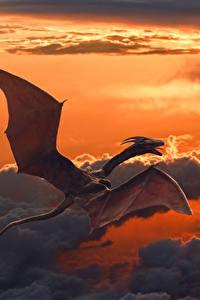 Bilder Drache Himmel Flug Wolke Fantasy