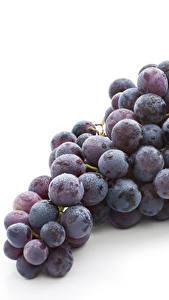 Bilder Weintraube Weißer hintergrund