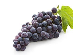 Bilder Weintraube Weißer hintergrund Lebensmittel