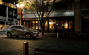 Fotos Lexus Grau 2020 NX 300 Bronze Edition Autos