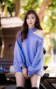 Fotos Asiaten Braune Haare Kleid Blick Bokeh Sweatshirt