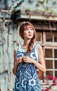 Bilder Asiaten Kleid Hand Zopf Unscharfer Hintergrund Braune Haare junge frau