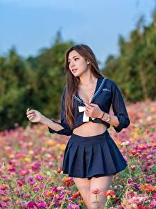 Bilder Grünland Asiaten Posiert Niedlich Braune Haare Unscharfer Hintergrund Rock Schulmädchen Uniform junge frau
