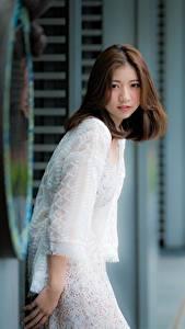 Bilder Asiatische Braune Haare Blick Bokeh
