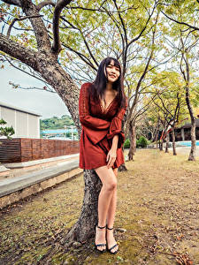 Wallpapers Asiatic Trees Frock Legs Decollete Smile young woman