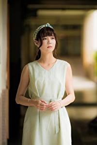 Fotos Asiatische Unscharfer Hintergrund Braune Haare Hand Kleid Blick