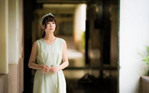 Fotos Asiatische Unscharfer Hintergrund Braune Haare Hand Kleid Blick junge frau
