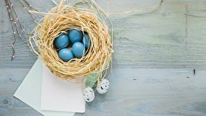 Desktop hintergrundbilder Ostern Ei Nest Blatt Papier