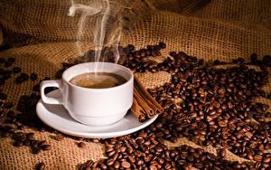 Bilder Kaffee Zimt Tasse Getreide Dampf Lebensmittel