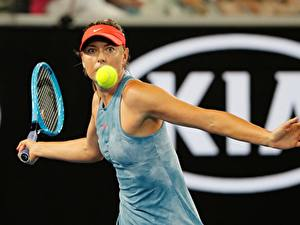 Bilder Tennis Maria Sharapova Ball Hand Australia Open 2019 Sport Prominente Mädchens