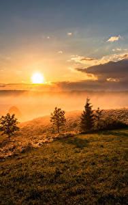 壁纸、、風景写真、朝焼けと日没、空、草、雲、太陽、