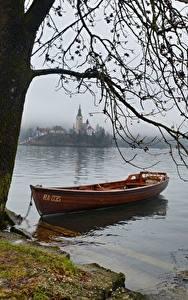 Wallpaper Lake Boats Slovenia Branches Fog Bled lake