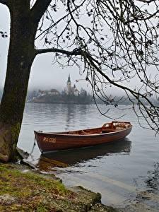 Bilder See Boot Slowenien Ast Nebel Bled lake