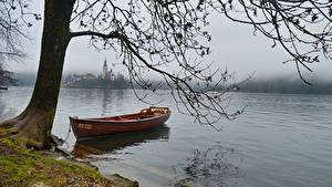 Wallpaper Lake Boats Slovenia Branches Fog Bled lake Nature