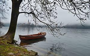 Wallpaper Lake Boats Slovenia Branches Fog Bled lake Nature