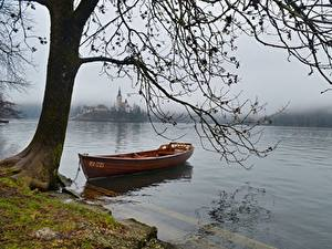 Bilder See Boot Slowenien Ast Nebel Bled lake