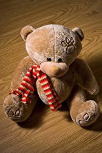 Fotos Teddybär Sitzt Schal