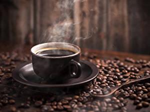 Fotos Kaffee Tasse Getreide Dampf Untertasse
