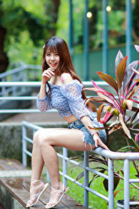 Bilder Asiatische Braune Haare Sitzt Bein Shorts Bluse Lächeln Blick