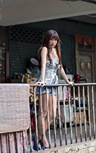 Desktop hintergrundbilder Asiatisches Zaun Braunhaarige Mädchens