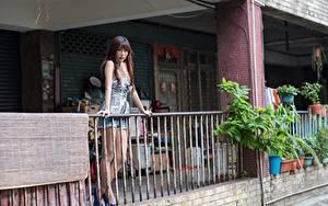 Bilder Asiatisches Zaun Braunhaarige Mädchens