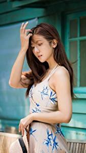 Bilder Asiatisches Posiert Kleid Hand Der Hut Braunhaarige junge frau