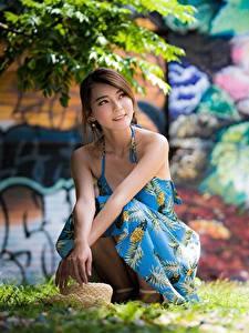 Hintergrundbilder Asiaten Gras Der Hut Bokeh Kleid Braunhaarige Sitzend