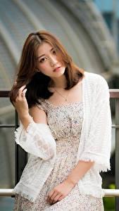 Hintergrundbilder Asiatisches Zaun Unscharfer Hintergrund Braune Haare Starren Hand Mädchens