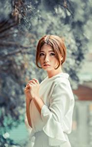 Bilder Asiaten Unscharfer Hintergrund Braunhaarige Blick Hand Mädchens