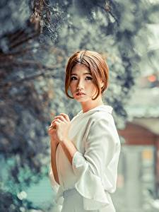 Fonds d'écran Asiatiques Arrière-plan flou Aux cheveux bruns Voir Main Filles