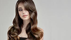 Fotos Grauer Hintergrund Braune Haare Haar Starren Hübsch Frisuren junge frau