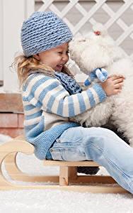 Fotos Hunde Kleine Mädchen Bologneser Mütze Schlitten Lächeln Sitzend Lachen Kinder