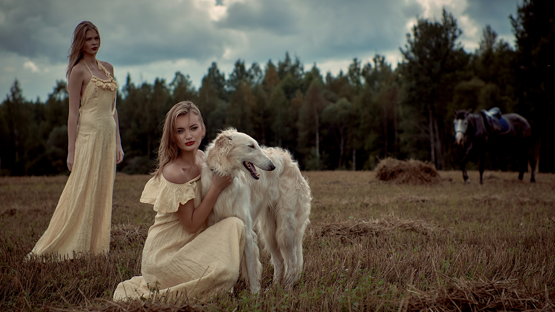 Picture Sighthound dog Russian hunting sighthound 2 young woman Animals frock 1920x1080 Dogs Two Girls female animal gown Dress