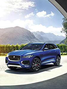 Fotos Jaguar Blau 2015  F-Pace S auto