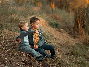 Bilder Sitzend Junge Zwei Gras Ekaterina Borisova kind