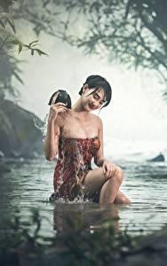 Hintergrundbilder Asiatische Bach Sitzen Nebel Nass Brünette Mädchens