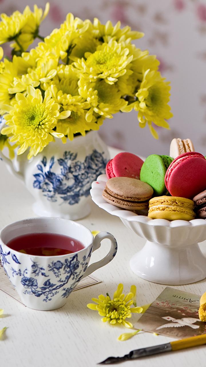 Hintergrundbilder Macaron Tee Chrysanthemen Tasse Lebensmittel Stillleben 720x1280