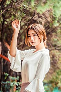 Hintergrundbilder Asiaten Ast Blatt Bluse Hand Braune Haare junge frau