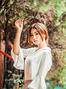 Desktop hintergrundbilder Asiaten Ast Blatt Bluse Hand Braune Haare junge frau