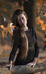 Fotos Ast Blatt Hand Kleid Haar Starren Braune Haare Federica junge frau