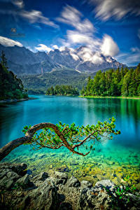 Images Germany Mountains Lake Stones Branches Eibsee Nature