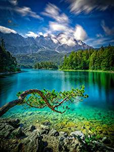 Images Germany Mountains Lake Stones Branches Eibsee