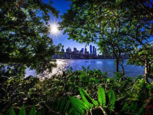 Hintergrundbilder Vereinigte Staaten Haus Brücken New York City Sonne Ast Bucht Brooklyn Bridge Städte