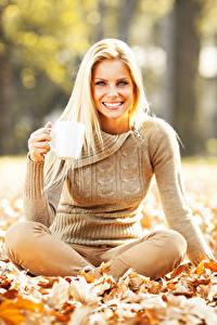 Fotos Herbst Blond Mädchen Lächeln Blattwerk Sweatshirt Sitzen Mädchens