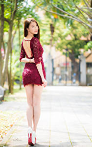 Images Asiatic Back view Legs Frock Brown haired Beautiful young woman
