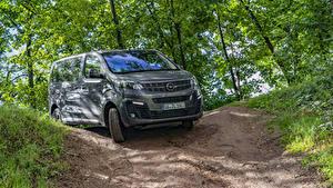 Desktop hintergrundbilder Opel Ein Van Graue Metallisch  automobil