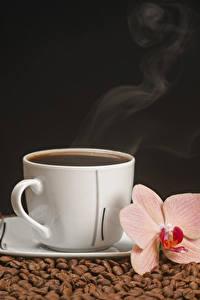Fotos Kaffee Orchideen Schwarzer Hintergrund Tasse Getreide Dampf Lebensmittel