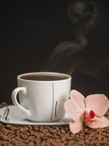Fotos Kaffee Orchideen Schwarzer Hintergrund Tasse Getreide Dampf das Essen